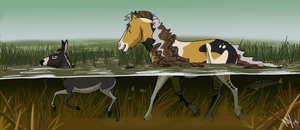 Summer 2014 Objective   The Outland Marsh by MariahWhy