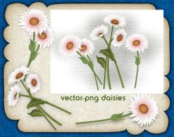 Vector Png Daisies by roula33