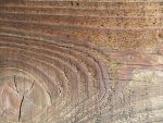 wood grain 26 by juutin-stock