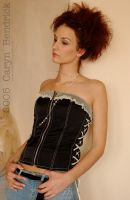 cvsw - Corset Set 11 by cvsw-stock