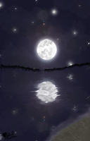 Reflections of the Moon by SybilThorn