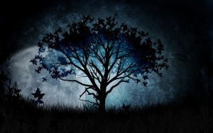 Midnight Silhouette by Verenth