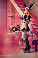 Rachel Alucard maid ver. by lina-no-uta