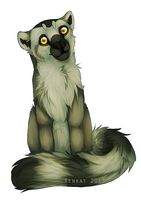 Lemur by Renkat