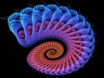 Spiral Blush by Thelma1