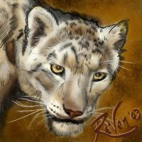Snow Leopard Portrait by watarigarasu