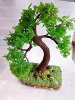 bonsai by biser-magpie