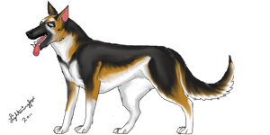 Custom GSD for WolfPawDragonClaw246 by lighteningfox