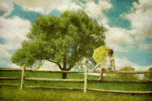 Sunny afternoon by Owll