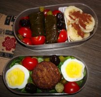 Bento falafel and dolma by Vetriz
