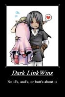Dark Link Wins by Demi-feind
