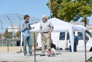2014 Dog Festival, The Look Alike Contest 7 by Miss-Tbones