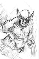 Wolverine Pencils by stokesbook