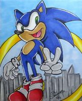 Sonic the hedgehog by TaliShemes