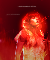 Shake it Out - Florence Welch by JonTylerthe27th