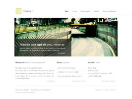 Clean webdesign by bisek0 by WebMagic
