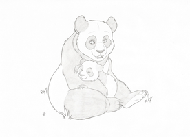 Panda napping by Joey-Darkmeat