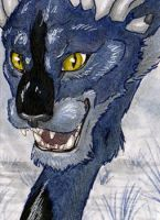 Cold blue... ACEO by NikiKalat