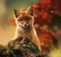 Curious Fox Speedpaint by GaiasAngel