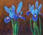 Purple Irises - oil pastels by davepuls