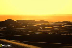 Golden Sands by FJ24