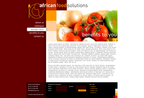 African Food Solutions by thren