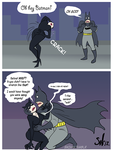 Catwoman no! by sw