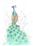 Peacock by Ilona-S