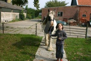bringing Roisin to the pasture by tinkerlady