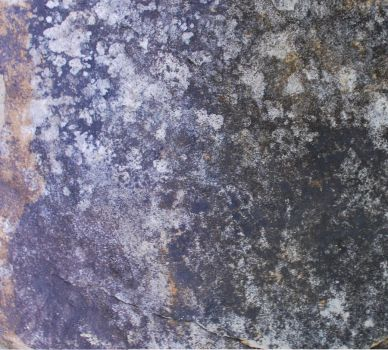 Texture - E. TN Mountain Stone by robicus