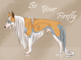 Be Your Firefly ref by Meykka