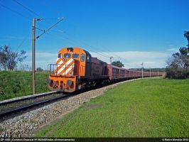 CP1560+Special Freight10032010 by Comboio-Bolt