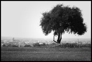 Tree . by drGore666