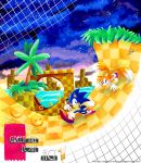 Green Hill Zone Act 1 by MissNeens