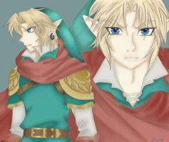 Skyward Sword Manga Link by OwlLisa