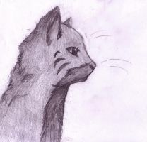 Cat sketch -Style practice-1 by Hawkheart1