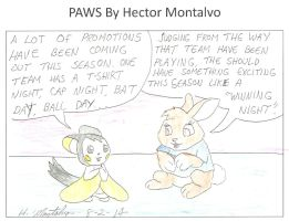 Sports Promotions by HectorNY