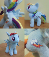 MLP Rainbow Dash - other photos by NekoRushi