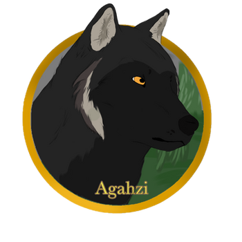 Agahzi Coin by MikoMan909