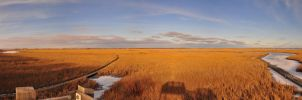 Marsh Boardwalks Panorama by Gynormus-Cranius