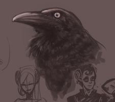 Australian Raven Study by PsychedelicMind