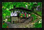 home with rugs in Bulgaria by georgitanev