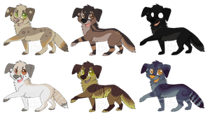 doggy adopts by Chargay
