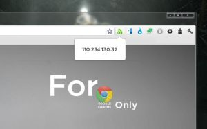 Quick ip checker For Google Chrome by CyWin