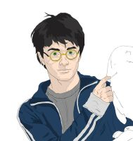 Daniel Radcliffe by wernerth