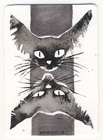 ACEO Ink Cats by Myrntai