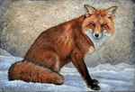 Fox in Snow, acrylic on canvas by shmeeden