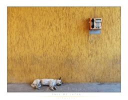 Call Me Later by vulpul