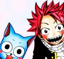 Fairy Tail - Natsu and Happy 2 by LaariTonks