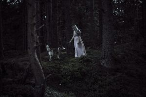 Forest spirits by Aderhine